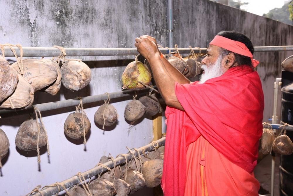Avadhoota Datta Peetham   Sankranti Festival in SGS Ashrama